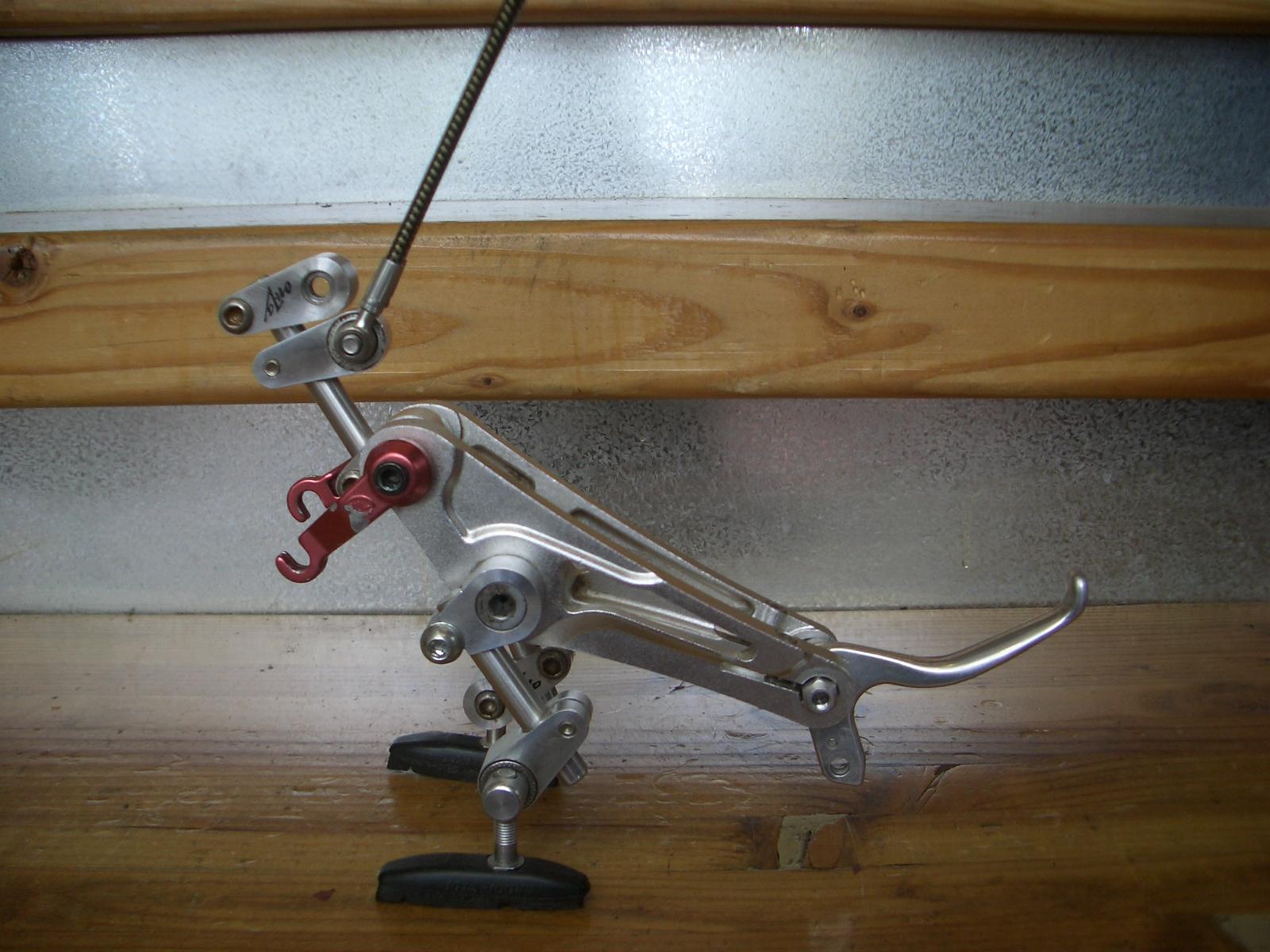 book stand dinosaur sculpture bike boo boos